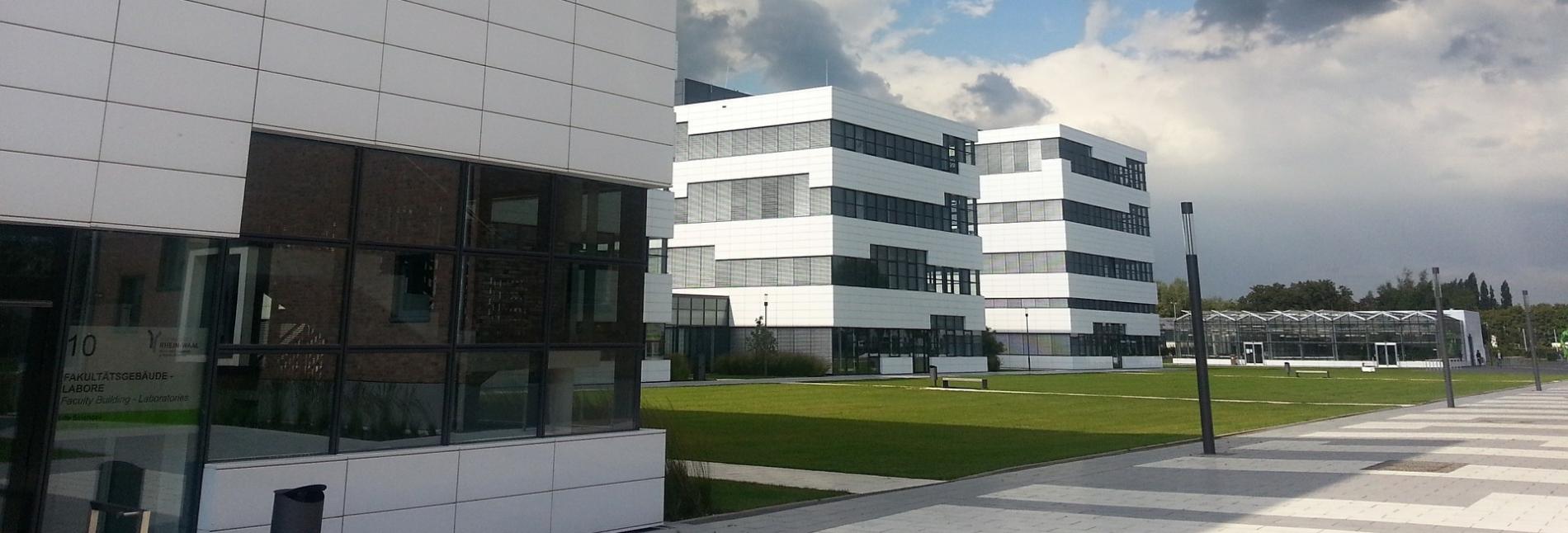 Die Leistungen des Instituts